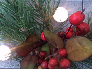 14.12.16 | Lichterfest in der Gärtnerei am 16. Dezember