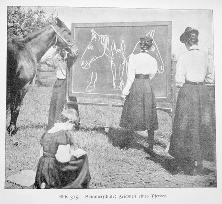 Zeichnen eines Pferdes – Summer School in der Gärtnerei vom 3. Juli bis 31. August